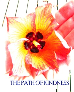 pathofkindness